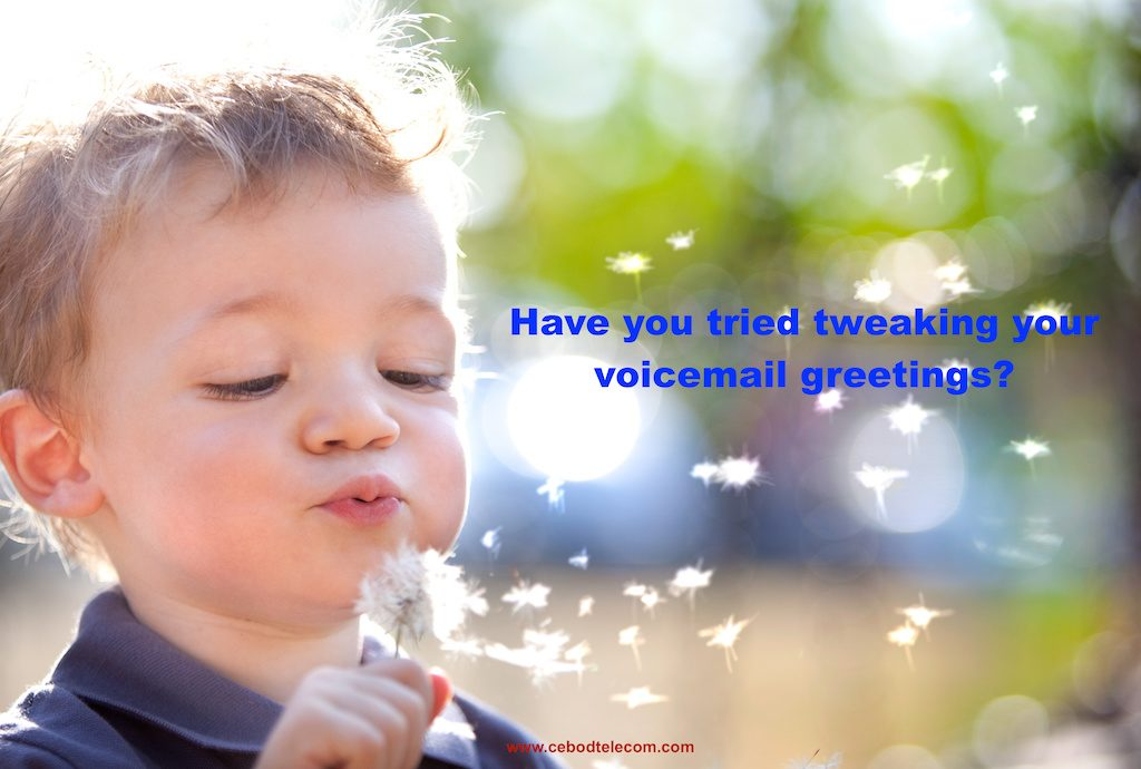 voicemail greeting script